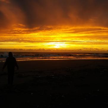 falafel sunset